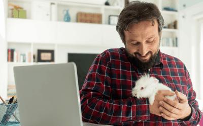 Concours | 5 options à gagner pour se former aux métiers de la santé animale